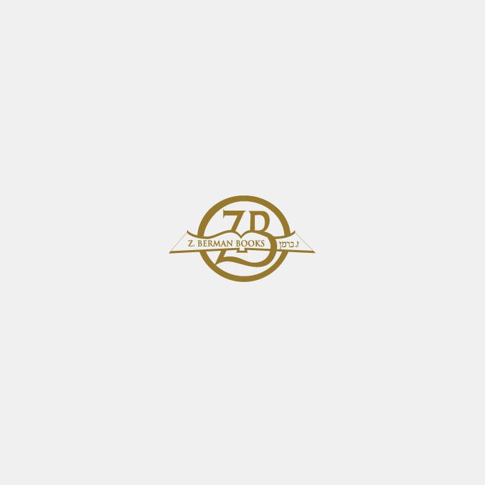 Lucite Mezuzah 12 cm - With Silver Stones